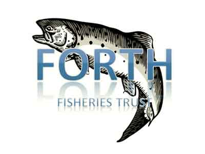 RFFT_Logo__new_web